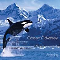 Ocean Odyssey - Oceaniczna odyseja (RFM)