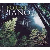 Forest Piano 30th - Leśny fortepian 30-lecie (RFM) muzyka z naturą