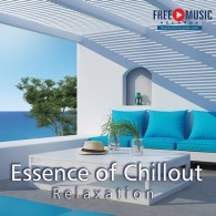 Essence of Chillout Relaxation - Esencja Chilloutu (RFM)